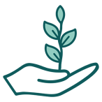 growth_icon-2