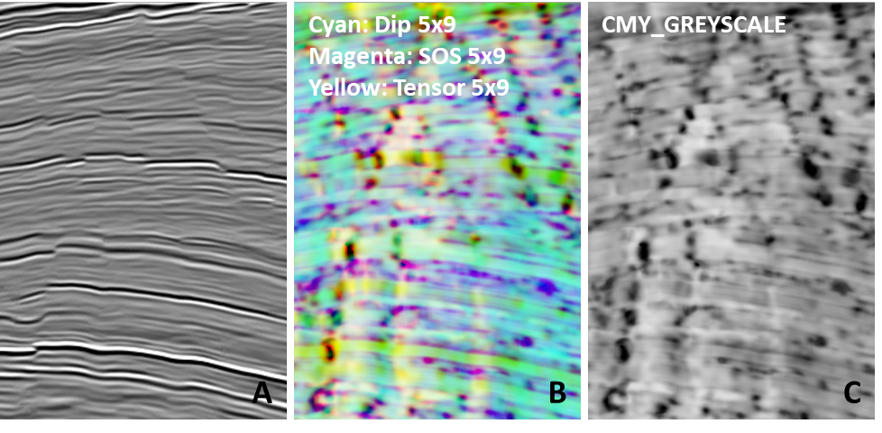 Figure 1 Input seismic data CMY Dip